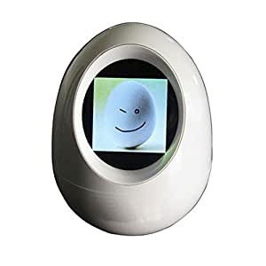 Amazon.com : Longruner Tumbler Digital Picture Frame Egg