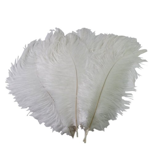 Real Natural White Ostrich Feathers