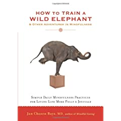 Learn more about the book, How to Train a Wild Elephant: And Other Adventures in Mindfulness