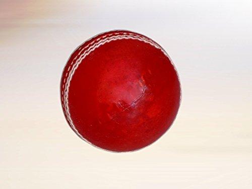 Vani Sports Leather Ball Set Of 1