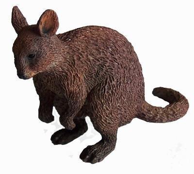 Australian Animals Quokka - klein