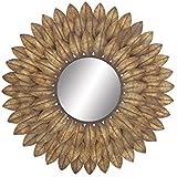 Deco 79 48509 Metal Wall Mirror