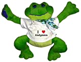 Plush Frog Toy in t-shirt with I Heart Endymion (first name, last name, nickname)