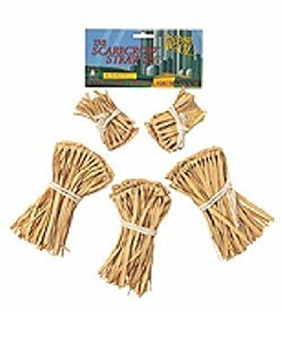 Wizard of Oz Straw Kit Costume Accessory