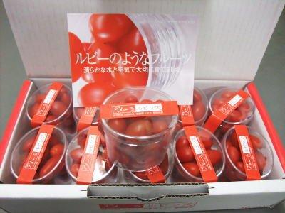 Oishiina Shop フルーツトマト アメーラルビンズ 1ケース 1Kg前後 10パック前後