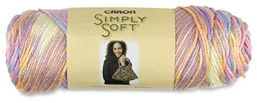 Bulk Buy: Caron Simply Soft Yarn Paints (2-pack) Baby Brights C97003-9801