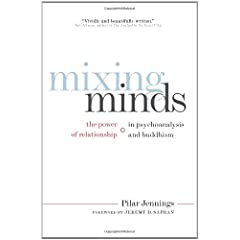 Learn more about the book, Mixing Minds: The Power of Relationship in Psychoanalysis and Buddhism