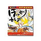 ご当地カレー(神戸)長田ぼっかけカレー 牛すじカレー 10食