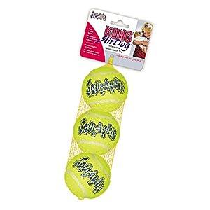 Pet Supplies : Pet Squeak Toys : KONG Air Dog Squeakair