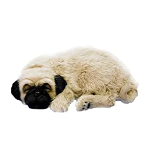 perfect petzzz pug buy perfect petzzz pug multi color online at low prices 2681