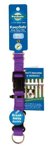 Prévenir les accidents de collier de chien