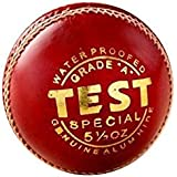 SA Sports Test Cricket Leather Ball - Pack Of 6 Balls