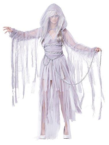 Haunting Beauty Ghost Spirit Costume
