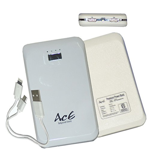 Ace PB 12 Intelligent Power Manages Solution Power Bank (MAH 12000)