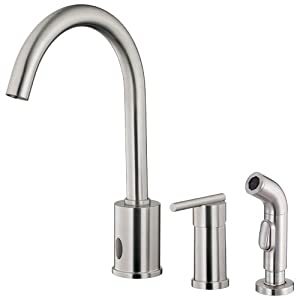 wr kitchen faucet danze d423058ss parma dual function kitchen faucet with single handle and matching side spray 3613