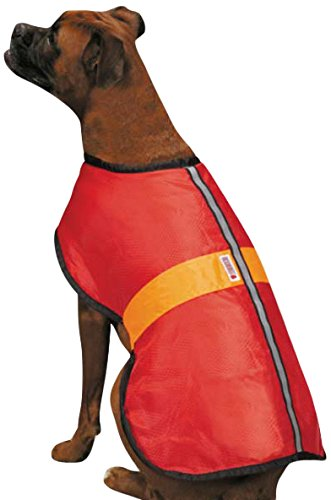 best jackets for dogs
