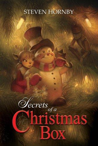 Secrets of a Christmas Box
