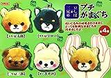 AMUSE Stuffed Animal Mameshiba San Kyodai Gamakuchi Coin Pouch (Sasuke)