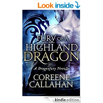 fury of dragon book cover
