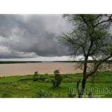 Countryside Of West Bengal, India - Photographic Print - Unframed