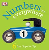 Numbers Are Everywhere! (FUN FLAPS)