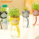 Wholesale 1pc Indoor DIY Mini Self-watering Bonsai With Ceramic Plants Pot Clover Seeds For Home Office Desktop...