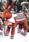 Elf on the Shelf Holiday Elf Pets Bundle: A Reindeer Tradition Storybook with Cuddly Plush Reindeer and Polar Pattern Reversible Saddle Blanket and Socks Set