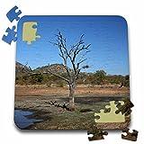 Angelique Cajams Landscapes Kruger South Africa - Kruger Landscape - 10x10 Inch Puzzle (pzl_26840_2)