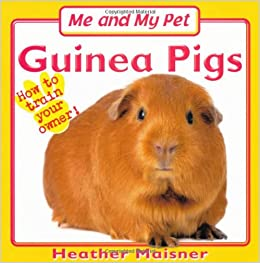 How To Care for Guinea Pigs