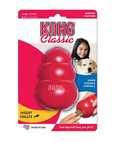 Kong dog puzzle toy review