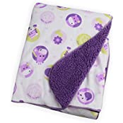 Carter Baby Blanket - Colorful Baby Blanket, Warm And Cozy, Extra Soft Fleece Blanket 30 X 40 In (Purple Animals)