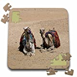 Angelique Cajam Egypt - Two camels in the desert - 10x10 Inch Puzzle (pzl_26808_2)