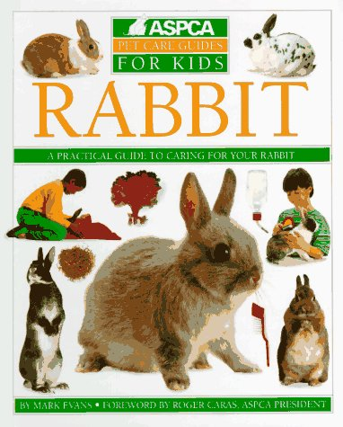 How to Care for Pet Rabbits