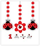 Creative Converting Ladybug Fancy Hanging Decorations with Stickers, 3-Piece