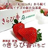 新種の静岡県産いちご きらぴ香いちご【約300g×2pc】