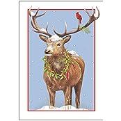 """""""Peacefull Buck"""" Christmas Cards"""
