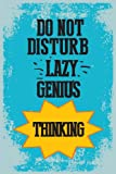 Seven Rays Lazy Genius (12 X 18) Small Poster