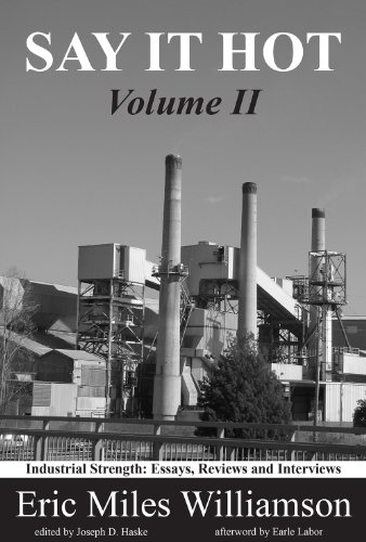 NEW 2: Say It Hot, Volume II: Industrial Strength: Essays on American Writers