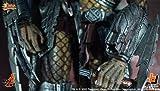 Movie Masterpiece - 1/6 Scale Fully Poseable Model: Alien vs Predator AVP Celtic Predator