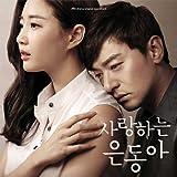 愛するウンドン 韓国ドラマOST (JTBC)