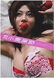 月刊小泉麻耶 (SHINCHO MOOK 103)