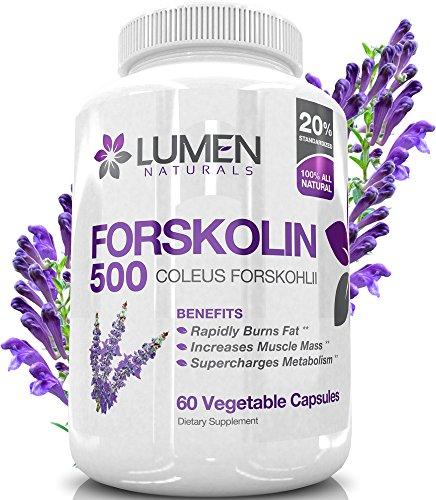 Forskolin 500mg 2X Strength 20% Standardized - Get the