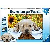 Ravensburger Puzzles Puppy Picnic, Multi Color (150 Pieces)