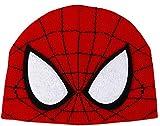 Marvel's Amazing Spider-Man 2 Beanie by elope