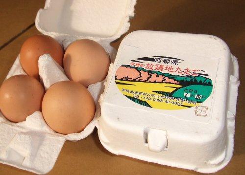 西都原有精卵たまご(放し飼い地鶏玉子)  農家民宿ももくり百年 吉野さん (8個)