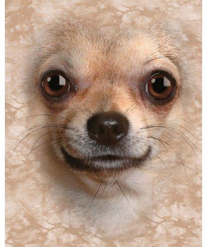 Chihuahua Dog Fleece Blanket