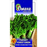 Omaxe Parsley Forest Green Triple Curled -pack Of 3 Each Pack 100 Seeds Of Exotic Seeds