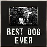 """Creative Co-Op DA7058 Black Framed Best Dog Ever Photo Frame, 4 By 6"""""""