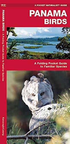 Panama Birds (Pocket Naturalist Guide)