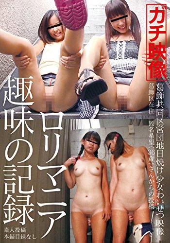 葛飾共同区営団地 日焼け女わいせつ映像 [DVD]